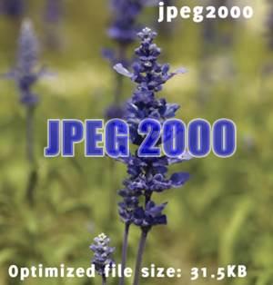 JPEG20000 (0)